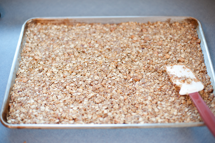 apple granola-4